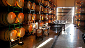 Danza Del Sol's Barrel room lit by csquaredevents.com